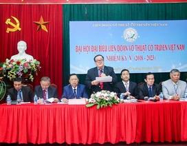 Ông Hoàng Vĩnh Giang làm Chủ tịch Liên đoàn võ thuật cổ truyền Việt Nam