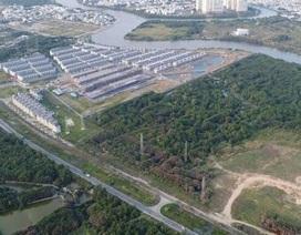 Công ty Tân Thuận: Nắm nhiều dự án, mặt bằng nhưng kinh doanh yếu kém