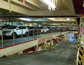 Hàng nghìn ôtô Thái Lan cập cảng, giá xe có giảm ngay?