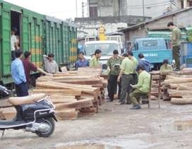Truy tố nguyên 3 cán bộ hải quan trong đường dây buôn lậu gỗ