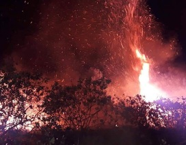 Đám cháy rừng lan rộng trong đêm, hàng trăm người lăn mình dập lửa