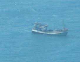 Cứu 9 thuyền viên bị chìm tàu trên vùng biển Cà Mau