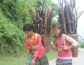 """Nhiều trẻ em bị dụ dỗ, ép """"lao động khổ sai"""" ở TPHCM"""