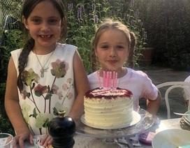 Harper Beckham tưng bừng đón sinh nhật lần thứ 7