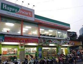 Hapro sau cổ phần hoá: Đẩy mạnh nguồn lực vào xuất khẩu, thương mại dịch vụ