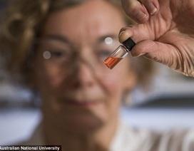 Sắc tố màu lâu đời nhất thế giới 1,1 tỷ năm tuổi  vừa được phát hiện