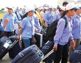 Người lao động đi làm việc ở nước ngoài được hỗ trợ thế nào?