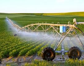 Nông nghiệp thông minh 4.0: Đi nhanh nhưng đừng chạy vội!