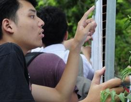 Học viện Ngân hàng công bố 4 mức điểm sàn xét tuyển
