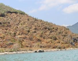 Khánh Hòa xác minh thông tin 5 vị trí đất có yếu tố nước ngoài