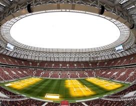 Luzhniki - Nơi hội ngộ tình yêu và niềm đam mê