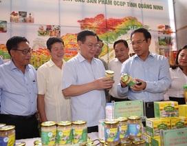 Phó Thủ tướng: Gắn sao cho mỗi sản phẩm chất lượng là gắn sao trong lòng dân