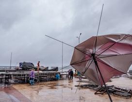 Thí sinh Hoa hậu Việt Nam ở Nghệ An vẫn tập luyện dù mưa bão