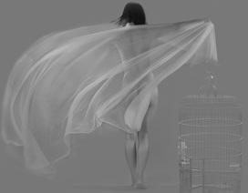 Cận cảnh tác phẩm ảnh khoả thân của 10 nhiếp ảnh gia nổi tiếng