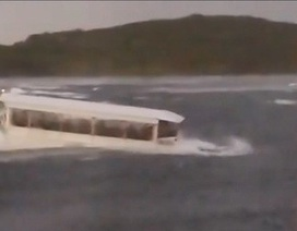 Bão nhấn chìm tàu du lịch Mỹ, 9 thành viên trong một gia đình thiệt mạng