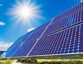 Cà Mau: Dự kiến xây nhà máy điện mặt trời nghìn tỷ