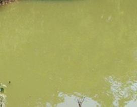 2 anh em ruột tử vong dưới ao nước của gia đình