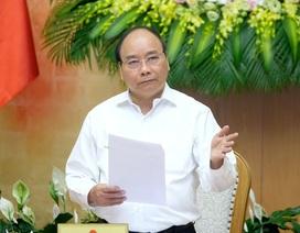 Phế liệu đổ bộ cảng biển, Thủ tướng yêu cầu Bộ Tài nguyên xử lý nghiêm khắc