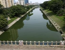 Nước sông Tô Lịch chuyển màu xanh như nước hồ Gươm
