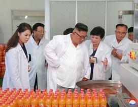 Đệ nhất phu nhân Triều Tiên tháp tùng ông Kim Jong-un thị sát nhà máy