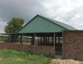 Gia đình Phó Chủ tịch HĐND huyện xây dựng trái phép trên đất lúa