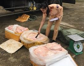 Vận chuyển 2,5 tấn thịt, bì lợn bốc mùi hôi thối đi tiêu thụ