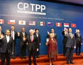 Sẽ trình phê chuẩn Hiệp định CPTPP vào kỳ họp Quốc hội tháng 10 tới