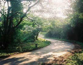 Những địa điểm trốn nóng lý tưởng gần Hà Nội