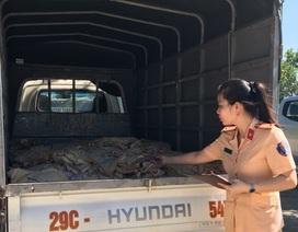 Chở 1 tấn thực phẩm bốc mùi hôi thối từ Hà Nội vào Thanh Hóa tiêu thụ