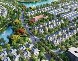 Loại hình bất động sản nào đang làm mưa làm gió trên thị trường hiện nay?