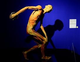"""Tạm ngừng hoạt động triển lãm """"Sự bí ẩn đặc biệt của cơ thể người"""""""