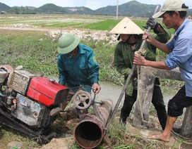 """Nông dân """"chắt"""" nước chống hạn, cứu lúa"""