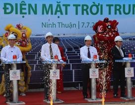 5.000 tỷ đồng xây nhà máy điện mặt trời lớn nhất Việt Nam