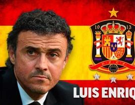 Luis Enrique chính thức trở thành HLV đội tuyển Tây Ban Nha