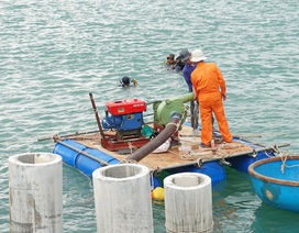 Quảng Ngãi: Khai quật tàu cổ chứa nhiều gốm sứ từ thế kỷ XVI