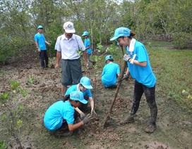 Học sinh, sinh viên Nhật Bản tham gia trồng rừng ngập mặn tại Cần Giờ