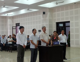 Đà Nẵng mở phiên sơ thẩm lần thứ 4 vụ buôn gỗ lậu kéo dài 7 năm