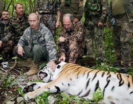 Truyền hình Pháp bị chỉ trích vì đưa tin sai lệch ông Putin đi săn hổ