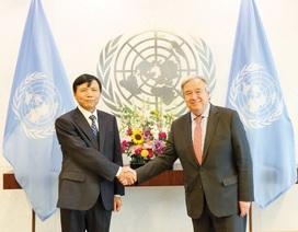 Đại sứ Đặng Đình Quý: Việt Nam tích cực đóng góp vào các trụ cột hợp tác cơ bản của Liên hợp quốc