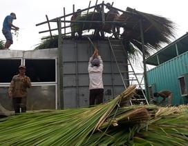 Quảng Ngãi: Phụ huynh xã nghèo chung tay sửa nhà bán trú cho con em