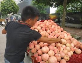 """5 loại quả Trung Quốc """"đội lốt"""" hàng Việt khiến chị em ăn quả đắng"""