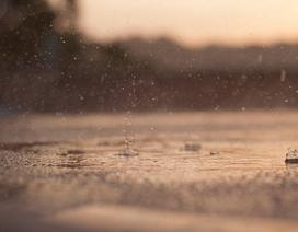 Muốn xem cầu vồng, hãy đợi dứt cơn mưa