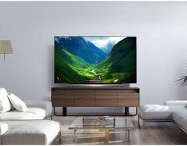 TV OLED của LG nhận nhiều đánh giá tốt năm 2018