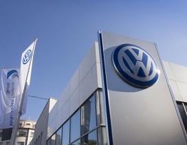 Xe Audi, Porsche và Volkswagen sử dụng kim loại có thể gây ung thư