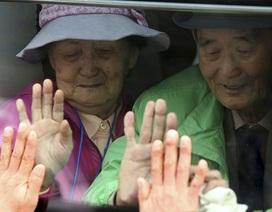 Cuộc đoàn tụ đẫm nước mắt ở biên giới liên Triều
