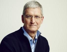 CEO Tim Cook của Apple quyên góp gần 5 triệu USD để từ thiện