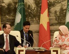 Chủ tịch nước Trần Đại Quang thăm và làm việc tại Liên minh châu Phi