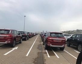 Hơn 13.000 xe không thuế đổ bộ, Hải quan TP.HCM hụt thu 5.600 tỷ đồng