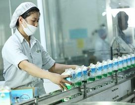 Mộc Châu Milk: Dinh dưỡng trọn vẹn, sữa mát lành từ mẹ thiên nhiên