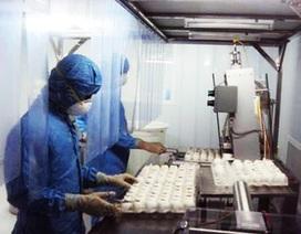 Tổ chức Y tế thế giới đặt hàng vắc xin cúm mùa của Việt Nam